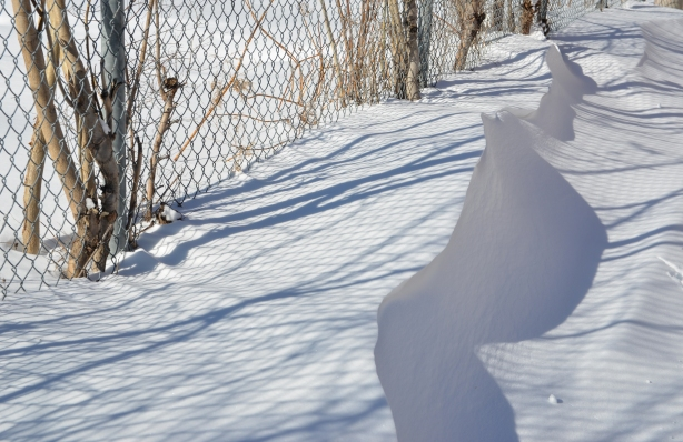 After a snowfall,  snowdrifts against a chainlink fence on Gilead Place