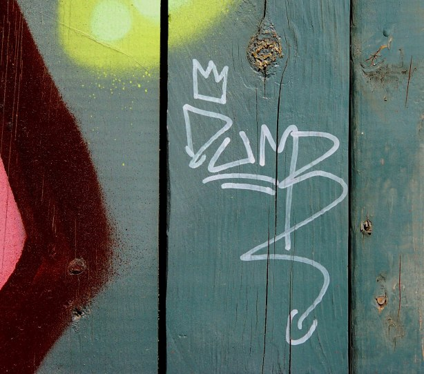graffiti word dumb on greenish fence.