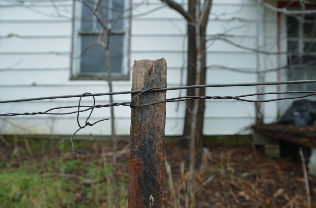 A closse up of the wire fence at the front of the house.