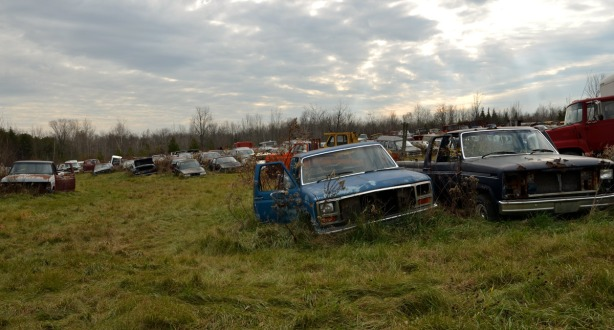 A field with rows of abandoned cars and trucks.