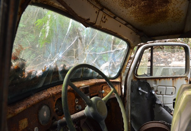 The front interior of an old car. The windshield is shattered in a few places. The dashboard is rusty