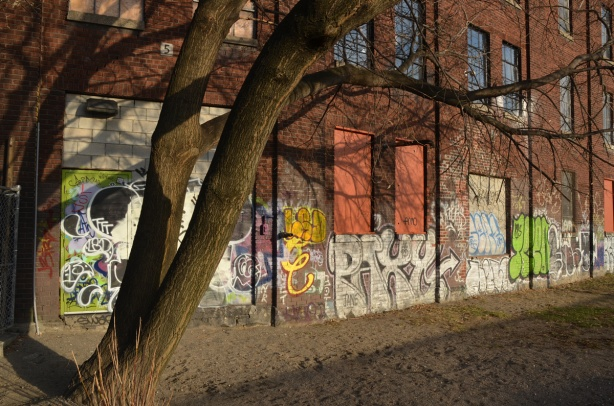 a large tree is in the foreground and it is casting a shadow over the wall of a red brick building that has graffiti on it.