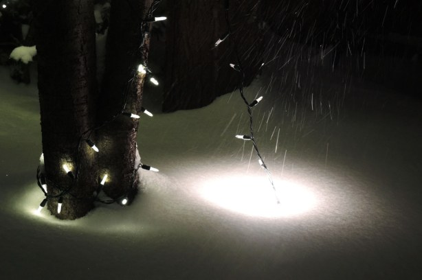 Snow covered ground lights make round patches of light in the snow.  Small white Christmas  lights are wrapped around a small tree trunk.   The wind is blowing snow across the lights.