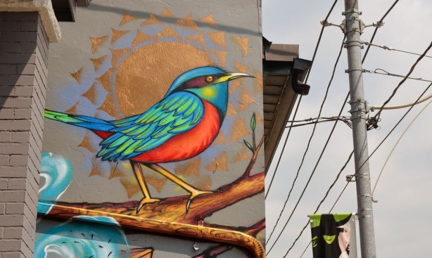 large painting of a red and blue bird on the side of a house.  Hydro wires are also in the photo