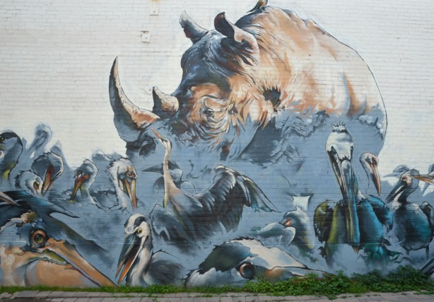 large mural on the side of two storey building of a rhino surrounded by large birds