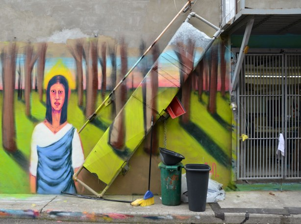 The top part of a woman with long black hair and wearing a white and blue dress is standing amongst many tree trunks.... Colourful graffiti in a Kensington lane.  There is a broom, a mop, and two large buckets on the sidewalk in front of her.