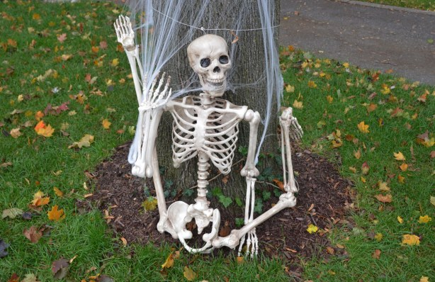 A skeleton at the base of a tree.  The legs of the skeleton are bent backwards.  It looks like it has just fallen.