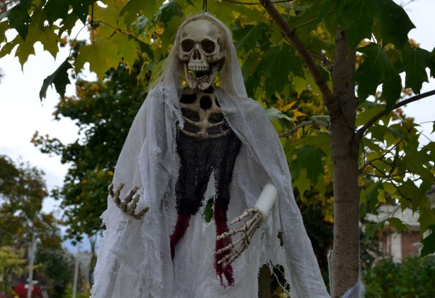 A skull, two boney hands and some black cloth and some billowing white gauze, all hanging from a tree,