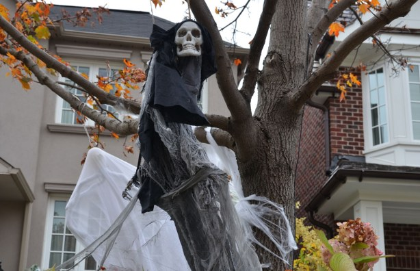 A skull, some black cloth and some billowing white gauze, all hanging from a tree,