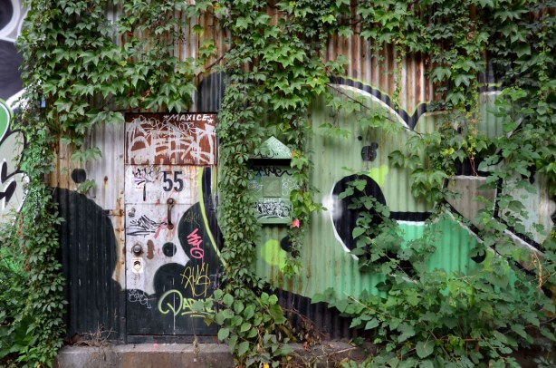 A corrugated metal wall that is partially obscured by vines.  Under the vines is a green graffiti tag.  There is also a door in the wall with the number 55 on it.  It is someone's home.  There is also a mailbox.