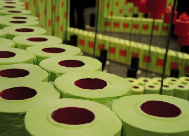 rolls of light green toilet paper are stacked to make short walls as part of an art installation.
