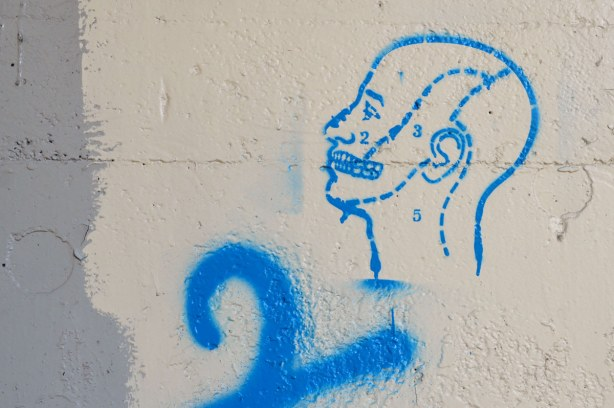 graffiti under a bridge - line drawing of a man's head with dotted lines dividing it into sections that are numbered