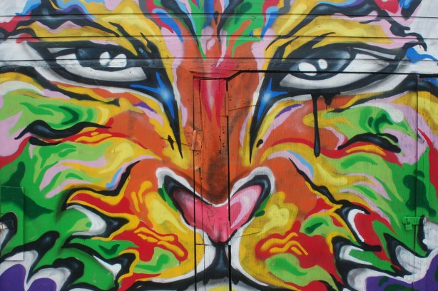 a multicoloured tiger's face painted on a garage door