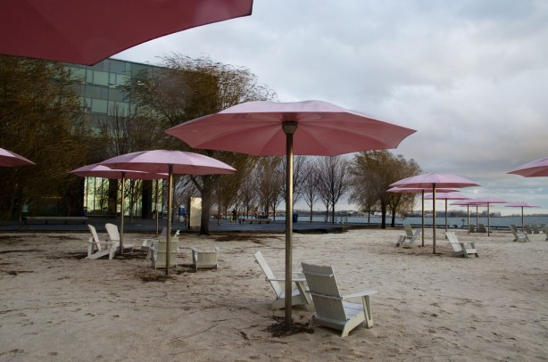 Sugar beach with its white chairs and pink umbrellas, with a four storey building behind as well as some willow trees