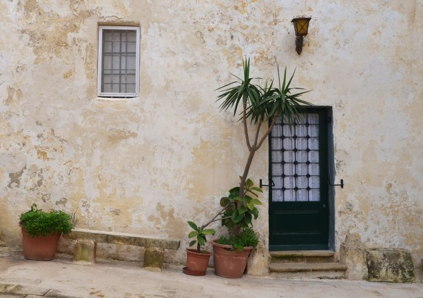 Potted plants beside a doorway in an old limestone building where nothing is straight.