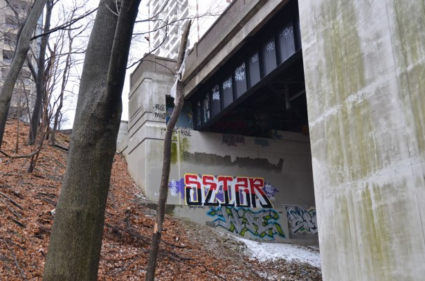 looking up towards the top of a bridge from a path along the ravine below.  two concrete supports are visible as well as part of the road way across the top of the bridge.  There is a graffiti tag on one of the supports.