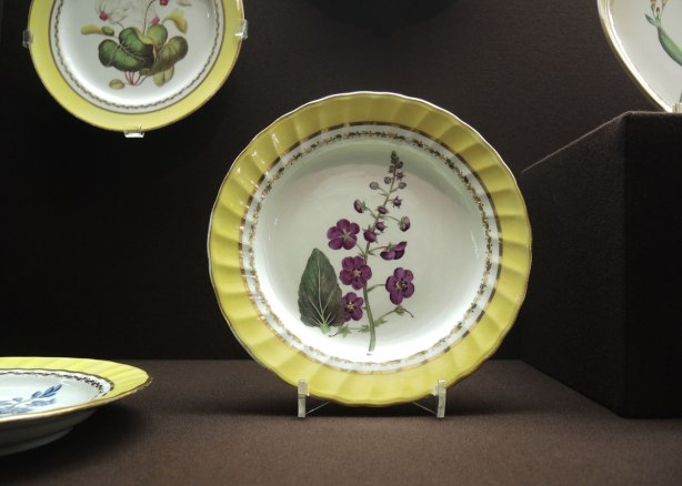 yellow rimmed plates with pictures of flowering plants in the center