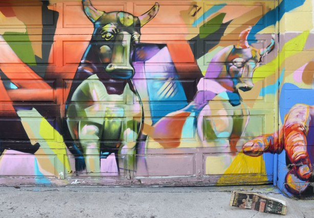 colourful graffiti of two bulls