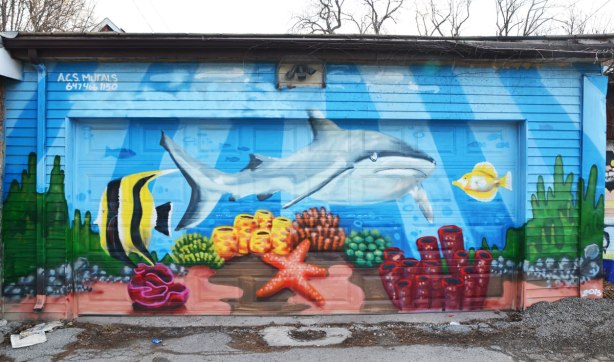 mural on a garage door in an alley of a marine scene.  A large grey and white shark is swimming along with a yellow and black angel fish.  There is a pink starfish and some coral as well.