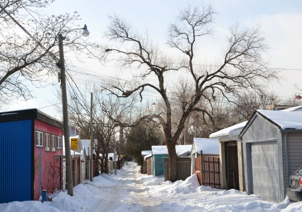 An interesting shaped tree with many large branches in a snow covered alley with garages along both sides of the alley.