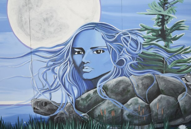 part of a First Nations story/legend themed mural painted on wood construction hoardings in Allan Gardens, blue woman's face, she is loking at the viewer, her long hair blowing in the breeze, rocks below her