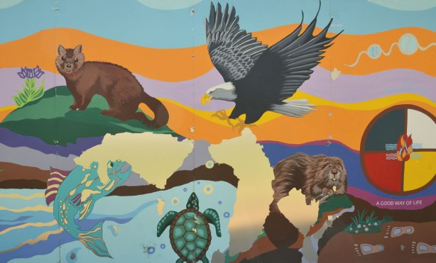 part of a First Nations story/legend themed mural painted on wood construction hoardings in Allan Gardens - animals, beaver, turtle, eagle, bird,