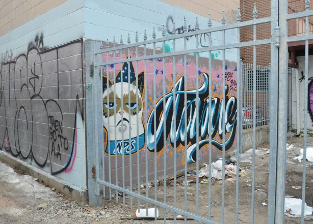 "A white cat head, wearing a crown.  Sad face on the cat.  Large letters spelling ""annie"" written beside the cat.  She is behind a locked metal bar gate."