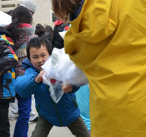 A little boy in a blue jacket with a determined and fierce look on his face in hitting someone in a pillow fight.