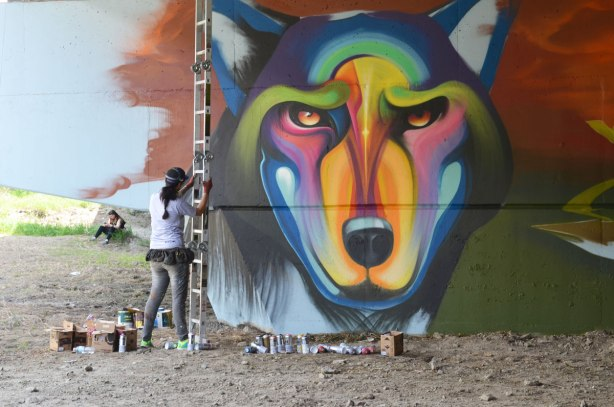 part of a mural under a bridge - a large multi coloured wolf head that is in the process of being painted.  A woman is positioning a ladder so that she can paint the upper parts of the piece.
