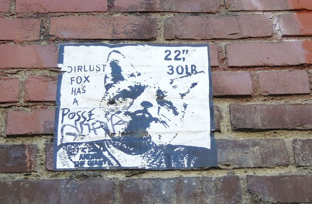 "wheatpaste street art on the exterior walls of an old red brick building - a fox's head with the text ""dirlust fox has a posse"""
