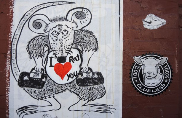 "wheatpaste street art on the exterior walls of an old red brick building - a rat with I 'heart' rat you and beside it is a smaller piece with a cow's head coming out of a circle and around the cirle are the words ""100% clueless"""