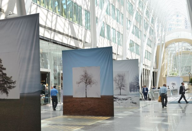 Three large banners  photographs of a tree against a white background hangs in Brookfield Place with its high rounded glass and white steel ceiling.   Some people walking past, ignoring the pictures