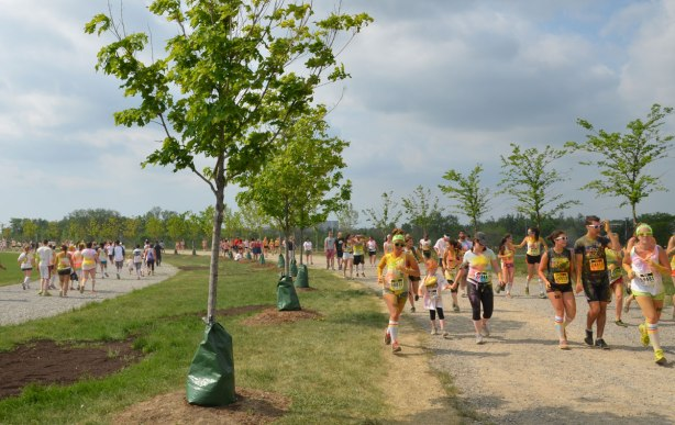 color me rad run through Downsview Park, on the path, past newly planted young trees, some runners are on the path running towards the camera while others are on another path running in the opposite direction