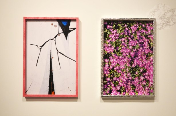 two pictures on a wall of a gallery.  The one on the right is of pink flowers and is in a metal frame.   The one on the left is an abstract of white and black that looks like cracks in a white surface