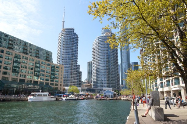 part of the Toronto waterfront, looking towards the city with high rise condos and the CN Tower.  some boats are moored , a man is standing beside the water reading a book.
