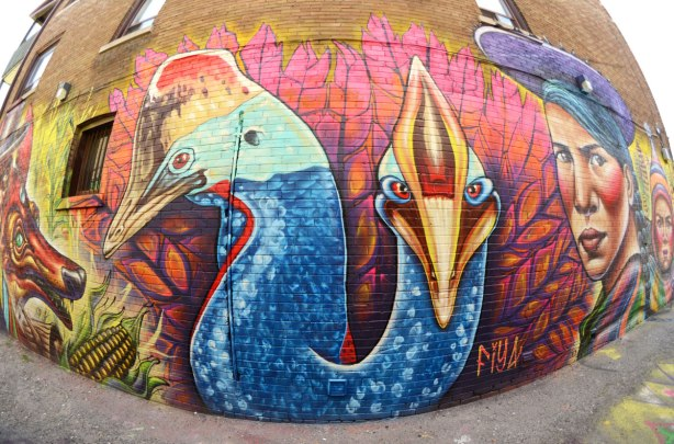 part of a large mural - the head and neck of two colourful birds by the street artist fiya