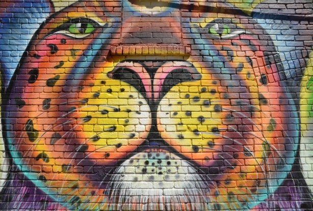 part of a large mural - close up of a tiger's face