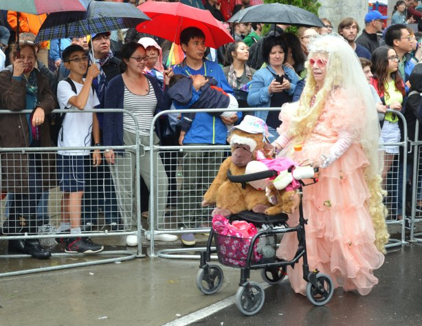 people at a pride parade in the rain - a person dressed in a long frilly pink and white dress pushing a walker on which there is large stuffed monkey