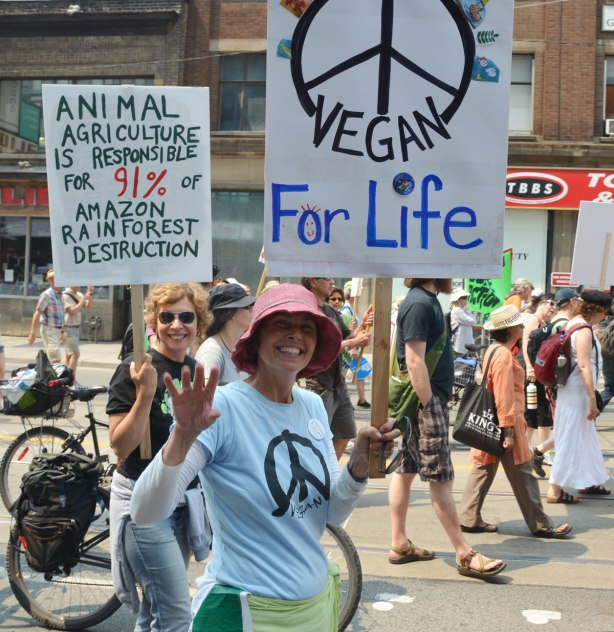 two women are walking in the jobs, justice and climate action march in Toronto and both are carrying signs.  One has a large peace symbol and the words 'vegan for life' and the the other sign says 'animal agriculture is responsible for 91 percent of amazon rainforest destruction