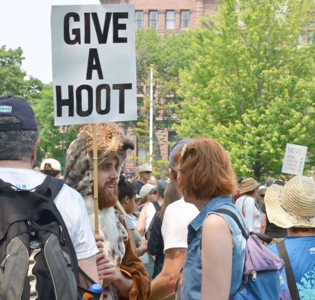 At the jobs, justice and climate action protest rally, a man wearing a hat that looks like an owl head.  He's carrying a sign that says 'Give a hoot'