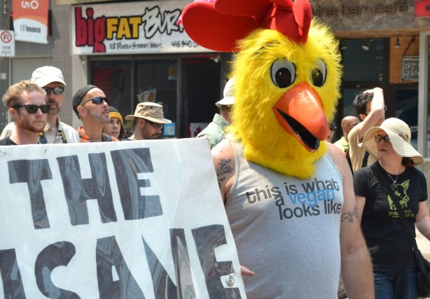 A man is walking in a protest march while holding one end of a banner.  He is wearing a large yellow chicken head and a T shirt that says 'this is what a vegan looks like'