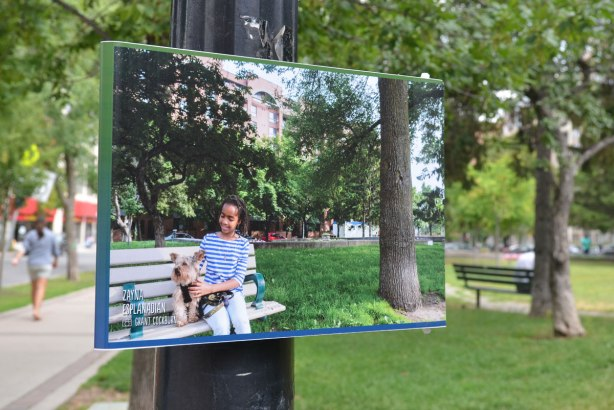 A picture of a girl with a dog on a bench is posted on a lamp post as part of an exhibit for the Pan Am games, a bench in the park is in the background