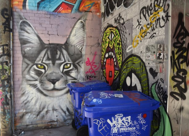 Graffiti Alley - in a corner, a grey tones painting of a cat's head, blue recycling bins in front of it and partially obscuring one corner.