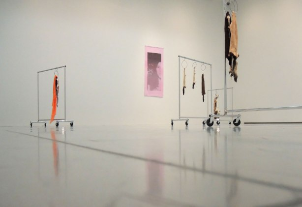 in an art gallery, an art installation that involves skins of dead animals hanging from garment racks. A pink picture of a woman hangs on the wall.