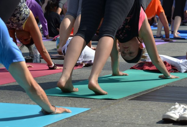 men and women at a yogathon - doing yoga outside in a large group - downward dog time