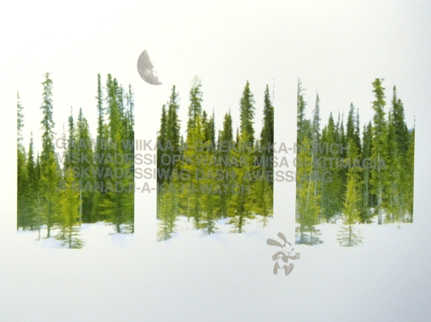 print of an evergreen forest, a text in Ashishnabe language on top of the trees, hanging on a gallery wall