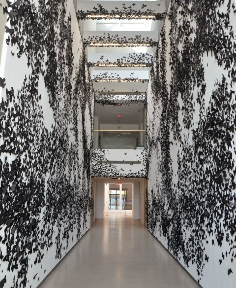 A hallway covered with black paper moths, part of an art installation called Black Cloud by Carlos Amorales where 30,000 black paper moths are stuck to the walls and ceilings of a hallway