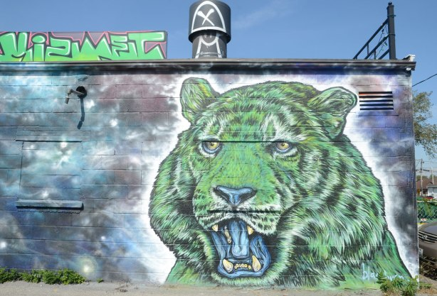 On the side of a building, a large street art painting of the head of a green animal. Open mouth, big fangs. Small ears and eyes. Bear? or maybe large bobcat?