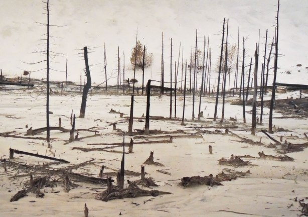 Close up of part of a photograph by Edward Burtynsky titled Uranium Tailings #2, Elliot Lake Ontario. It is a picture of a desolate swampy looking terrain where all the vegetation is dead. The trees have been reduced to dead poles.