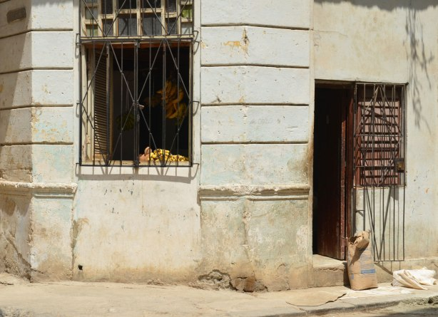 picture taken in the old part of the city of Havana Cuba - a building on a corner, metal bars over window, bananas in the window for sale. Door open
